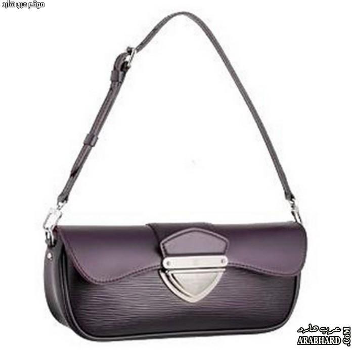 حقائب لويس فيتون 2014 ، Bags Louis Vuitton for Women 2014 arabhard13277075613.jpg